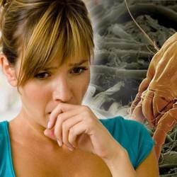 ป้องกันไรฝุ่น สาเหตุของโรคภูมิแพ้ ด้วยที่นอนยางพารา