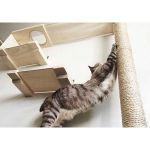 แก้ง่ายๆน้องแมวชอบทำลายเฟอร์นิเจอร์